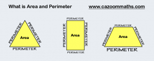 What is Area and Perimeter