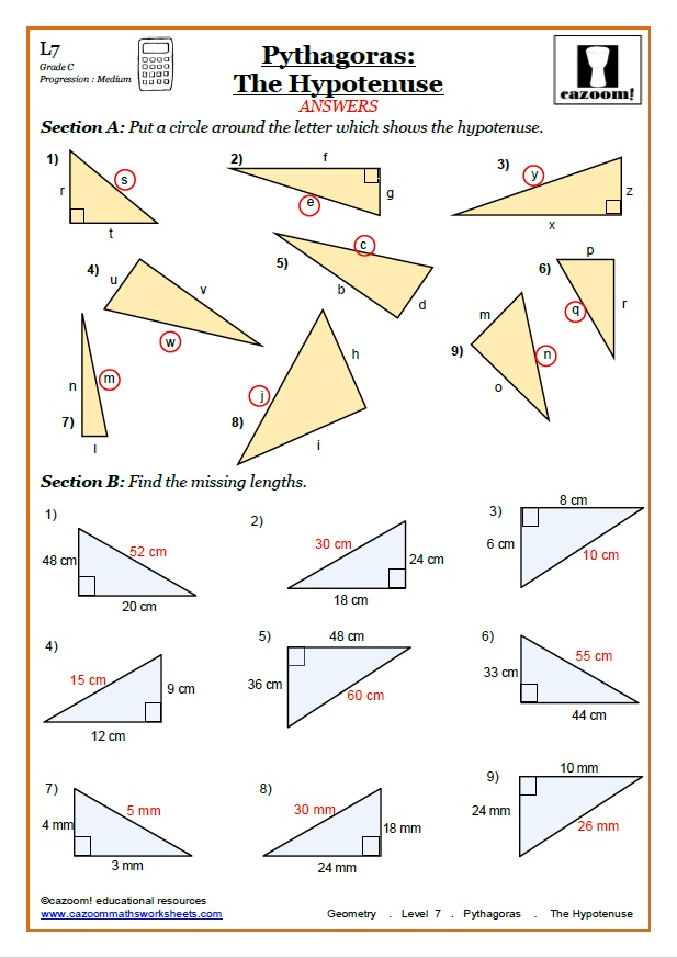 Pythagoras Maths Worksheet Answer
